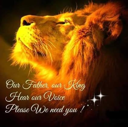 LION PROFILE PIC WITH PRAYER